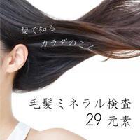 毛髪ミネラル検査  【カウンセリング込み】