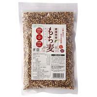 創健社 愛媛県産もち麦 300g