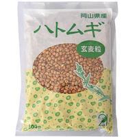 【取寄・火曜・常温】TAC2121 国産ハトムギ玄麦粒 渋皮付300g