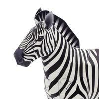 グラントシマウマ:Grant's Zebra(紙工作キット)
