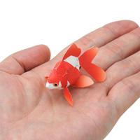 琉金(ハガキサイズ):Ryukin(紙工作キット)