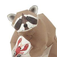 アライグマ:Raccoon(紙工作キット)