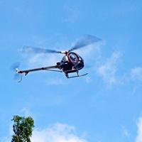Schweizer ヒューズ 9ch ヘリコプター ブラシレスモーター 全て金属 高シミュレーションリモートコントロール 航空機 モデル