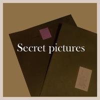 secret pictures vol.2