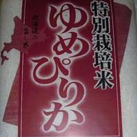 令和2年産 北海道産 特別栽培ゆめぴりか【30kg】