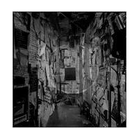 LIVE HOUSE, TOKYO ORIGINAL PRINT 50 『新宿LOFT』