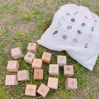 もりのめぐみ「四角い積み木」16個(16樹種)セット