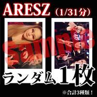 【チェキ / ランダム1枚】ARESZ(1/31分)