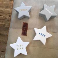 STAR FOOD CASE LOGO