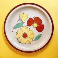 Dish Plate