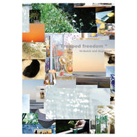 """""""Trapped Freedom"""" B2 Poster ( Limited 50 ) *Signed"""