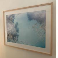 SUZUKI YOSHIKI Photograph 「Untitled」C
