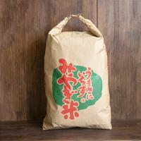 宮城県産ササニシキ(玄米)25kg