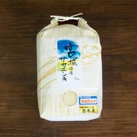 新米 ササニシキ10kg