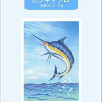 B5【カジキマグロ】