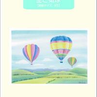 B5【空と気球】