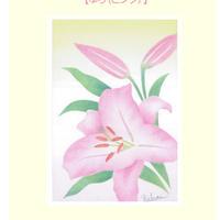 B6【ゆり(ピンク)】
