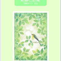 B5【新緑と野鳥】