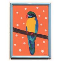 bird series_d