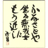 安井浩司 俳句墨書色紙『ふるさとや坐る無我女にもう近し』(『霊果』)