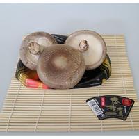 特選 本椎茸【岡山県産菌床栽培】肉厚特大3枚入り