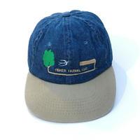 FISHER FARMS,LLC CAP