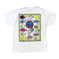 NEW 90's FISHES OF HANAUMA BAY T-SHIRT MADE IN USA🇺🇸size L