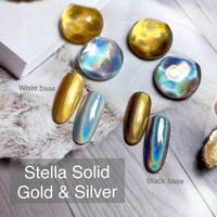 2月15日発売☆KiraNail Stella Solid (Unicorn Powder)(チップ付き)Gold/Silver