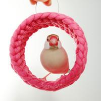 ホヨヨ ボールデラックス  rose pink
