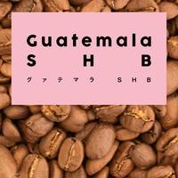 グァテマラ SHB