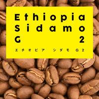 エチオピア モカ シダモ G2