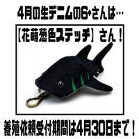 ‼️4月限定‼️【KASEI】ジーンベイザメ6+【花萌葱色ステッチ】