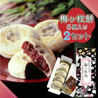 梅ケ枝餅 10個  (5個入り箱×2セット)