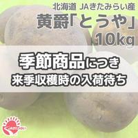 北見黄爵「とうや」 10kg【北海道 JAきたみらい産】 2/6(木)発送予定