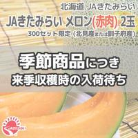 JAきたみらい メロン(赤肉) 2玉【北海道 JAきたみらい】