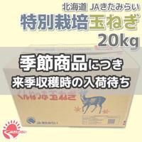 特別栽培玉ねぎ 20kg【北海道 JAきたみらい】
