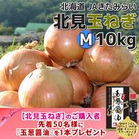 北見玉ねぎ M10kg【北海道 JAきたみらい】