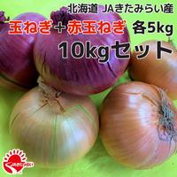 北見玉ねぎ+赤玉ねぎ 10kgセット【北海道 JAきたみらい産】