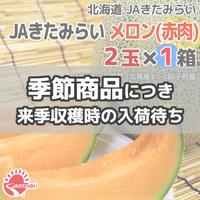 JAきたみらい メロン(赤肉) 2玉×1箱【北海道 JAきたみらい】