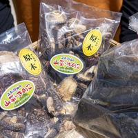 奥出雲亀嵩「久兵衛山の会」竹炭と原木乾燥椎茸の詰め合わせ