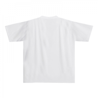 イソフラボン 化学Tシャツa