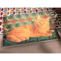 アメリカ 猫 ポストカード 絵葉書 茶トラ