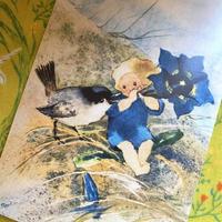 スイス製 『春の歌』 妖精 フェアリーズ 小鳥 ポストカード