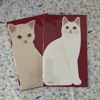8th期間限定♡通常1100円のセット 美猫 ダイカット グリーティング
