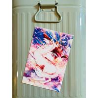 猫 ポストカード 『空を駆けるネコレオン』 ユニコーン