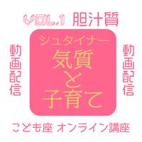 動画配信★オンライン講座『気質と子育て Vol.1 胆汁質』