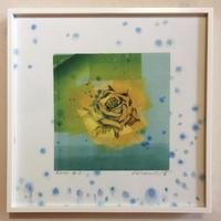 """アートプリント・シリーズ """"One hundred rose - 029 Rose G"""""""