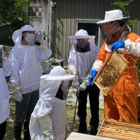 こいけや養蜂園の養蜂場見学