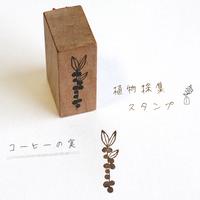 植物採集スタンプ:5『コーヒーの実』