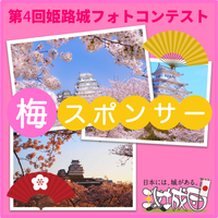 「第4回姫路城フォトコンテスト」個人スポンサー用チケット(梅)